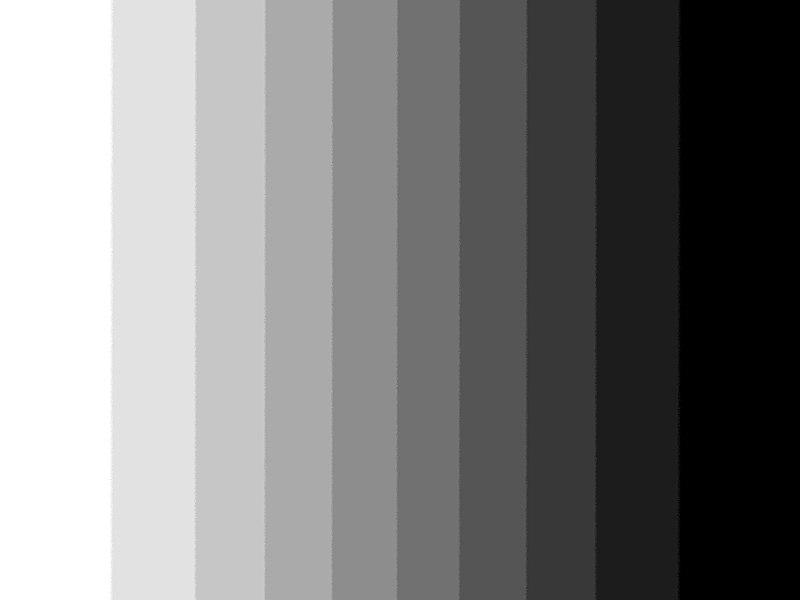Gray Color Palette Living Room
