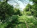 Green Lane to High Field - geograph.org.uk - 1335015.jpg