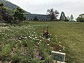 Greenhouse and lawn in Innoshima Flower Center 2.jpg