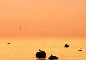 Gulf of Tallinn.jpg