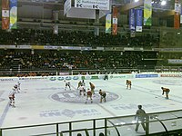 HC Bolzano-Sheffield Steelers.jpg