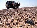 HaH 336 meteorite in situ.jpg