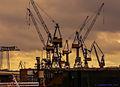 Hamburg, Hafen, Ballett der Kräne vorm Schlafengehen (14344035235).jpg