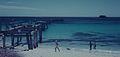Hamelin bay 1960s.jpg