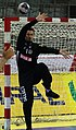 Handball-WM-Qualifikation AUT-BLR 140.jpg