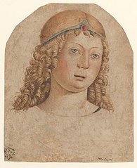 Head of a Youth with a Diadem