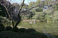 Heian-jingu shinen03bs3216.jpg