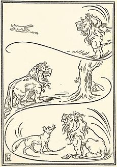 The Fox And Lion