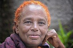 Henna Hair, Addis (10637625883)