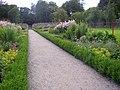Herbaceous borders, Woodstock, Inistioge, Co. Kilkenny - geograph.org.uk - 205298.jpg