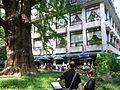 Hibiya Park-1.jpg