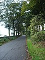 Hollins Lane - geograph.org.uk - 68733.jpg