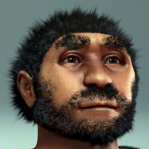 Homo erectus pekinensis - archeaeological