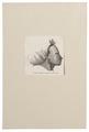 Homo sapiens - Santa Cruz-eilanden - 1700-1880 - Print - Iconographia Zoologica - Special Collections University of Amsterdam - UBA01 IZ19500145.tif