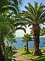 Hotel Galomar - Caniço - Ilha da Madeira - Portugal (4165264735).jpg
