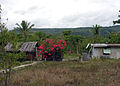 Housing on Lelepa, Vanuatu, 2006 - Flickr - PhillipC.jpg