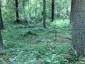Hyvinkää, Finland - panoramio - pan-opticon (14).jpg