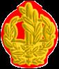 IDF RASAM Yam.png