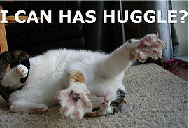 I CAN HAS HUGGLE?.jpg