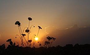 Indiana Sunset Redo - Flickr - Barbara Eckstein.jpg