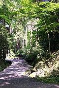 Ishiyamadera path.jpg