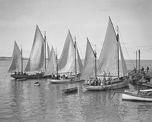 Italian Fishing Boats Fremantle.jpg