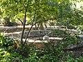 J. C. Raulston Arboretum - DSC06131.JPG