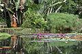 JBRJ Lago Frei Leandro Deusa Thetis.jpg