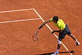 JM Del Potro - Roland-Garros 2012-IMG 3474.jpg