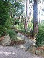 Japanese Garden at Pine Lodge, nr. St. Austell - geograph.org.uk - 1148737.jpg
