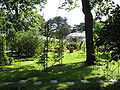 Jardin botanique lyon 2.JPG