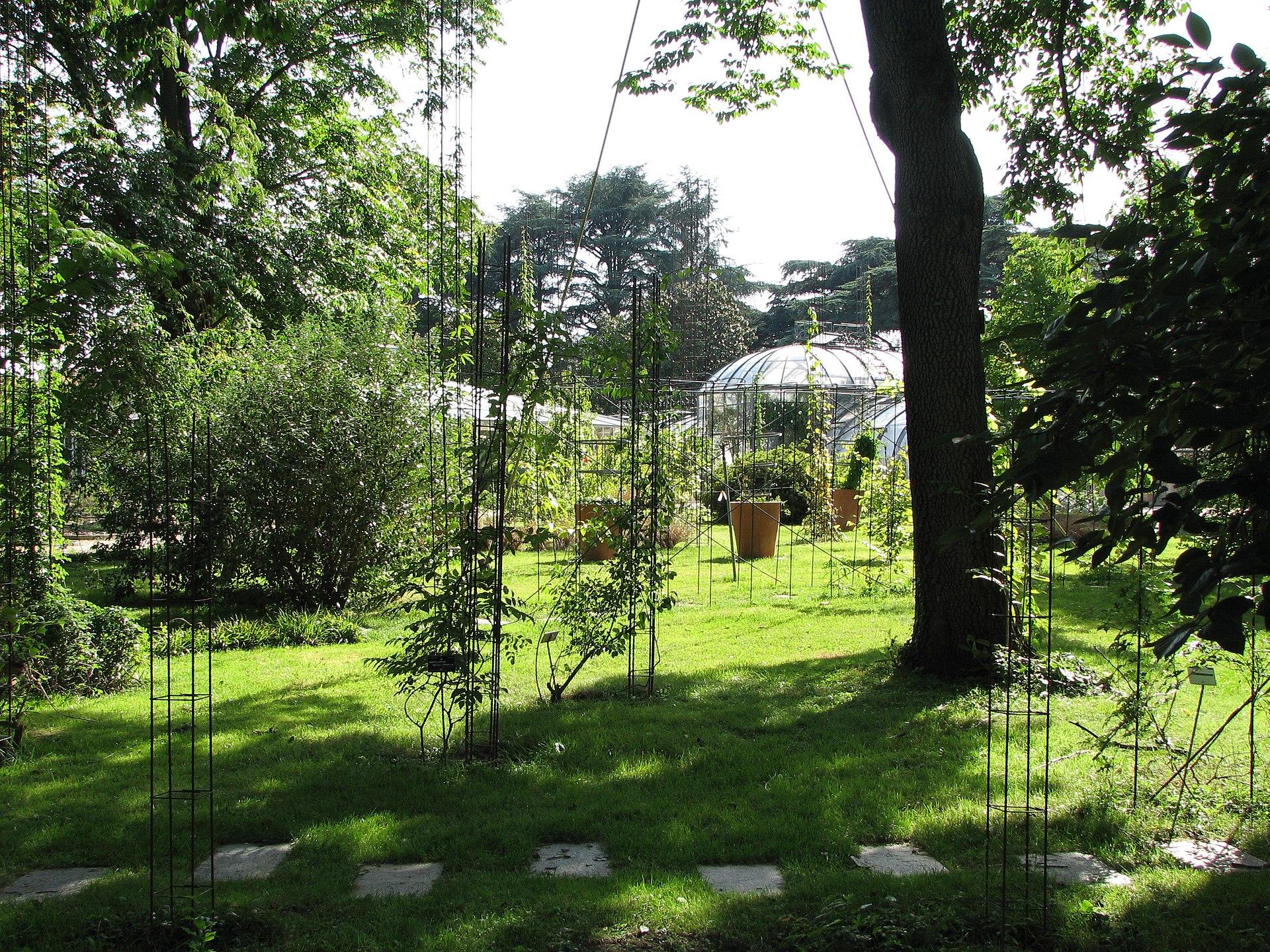Jardin botanique de lyon wikip dia - Jardin villemanzy lyon lyon ...
