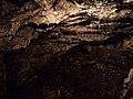 Jaskinia Lokietka Stalaktyty.jpg