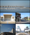 JaxBeachCollection1.png