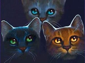 Erin Hunter - Power of Three