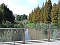 Jinsha museum 2 river.jpg