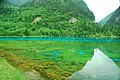 Jiuzhaigou, Aba, Sichuan, China - panoramio (49).jpg