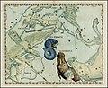 Johannes Hevelius - Delphinus and Equuleus.jpg