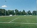 Jubileumi parki focipálya, 2017 Dabas.jpg