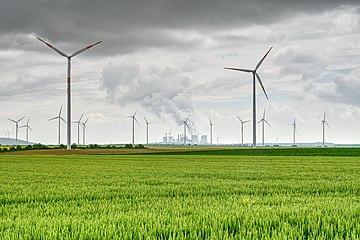 Kaiskorb Energie.jpg