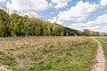 Kalletal - 2015-05-02 - LIP-013 Aberg-Herrengraben (47).jpg