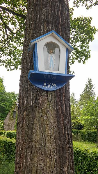 Kapelletje in boom, Kleine Boeretang, Dessel