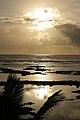 Kapoho Tide Pools, Waiopae, Pahoa (504373) (23566103232).jpg