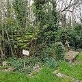 Kensal Green Cemetery (46835195134).jpg