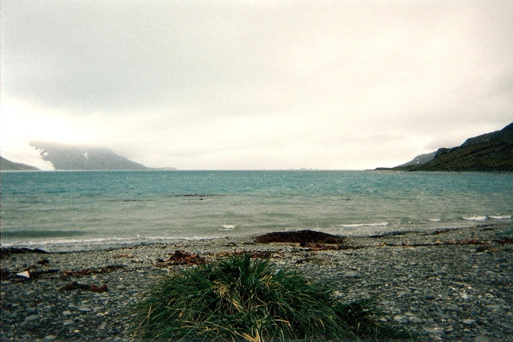 King Haakon Bay in South Georgia Island