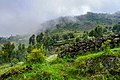 Kinigi, Ruanda (32445249318).jpg