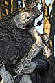 Kocsola, Nepomuki Szent János-szobor 2021 10.jpg