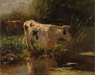 Cow beside a Ditch