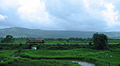 Konkan Railway - views from train on a Monsoon Season (22).JPG