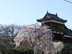 Koriyama Castle Nara.jpg